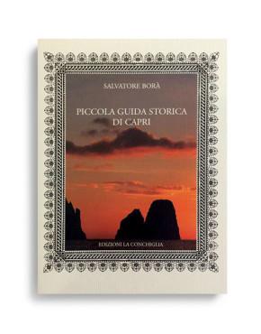 PICCOLA GUIDA STORICA DI CAPRI. Di SALVATORE BORA'. Pagine 105. Formato 16,50x12. NUOVA EDIZIONE. Collana Neptunea. Edizioni La Conchiglia Capri.