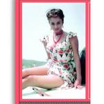SORRENTO MOVIES - Il cinema in Costiera. Di Antonino De Angelis. Pagg. 130. Formato 24,50x23,50. Edizione in cofanetto. Collana Haliotis. Edizioni La Conchiglia Capri.